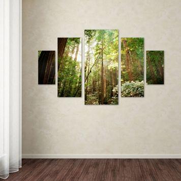 Muir Woods 5-piece Canvas Wall Art Set