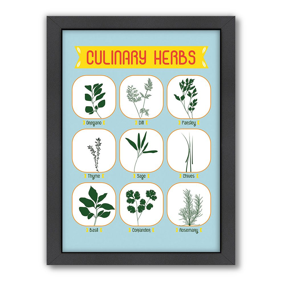 Americanflat Patricia Pino ''Culinary Herbs'' Framed Wall Art