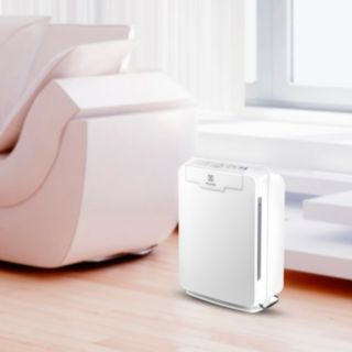 Electrolux PureOxygen 150 HEPA Air Purifier