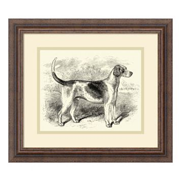 ''Foxhound'' Framed Wall Art