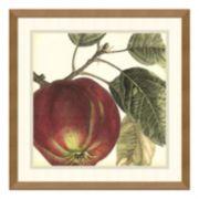 ''Apple'' Framed Wall Art