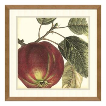 ''Apple'' Framed Wall Art