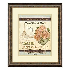 ''French Seed Packet II'' Paris Framed Wall Art