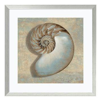 ''Aqua Nautilus'' Seashell Framed Wall Art