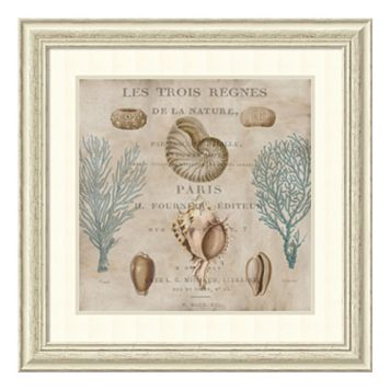 ''Le Mer II'' Paris Seashell Framed Wall Art