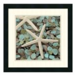 ''Aquatic I'' Starfish Framed Wall Art