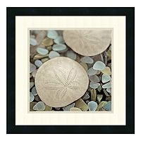 ''Aquatic II'' Sand Dollar Framed Wall Art