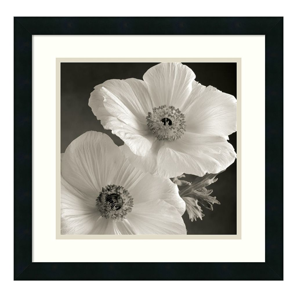 ''Poppy Study I'' Floral Framed Wall Art