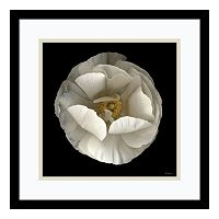 ''Folded Ranuculus'' Floral Framed Wall Art