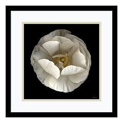 ''Folded Ranuculus'' Floral Framed Wall Art