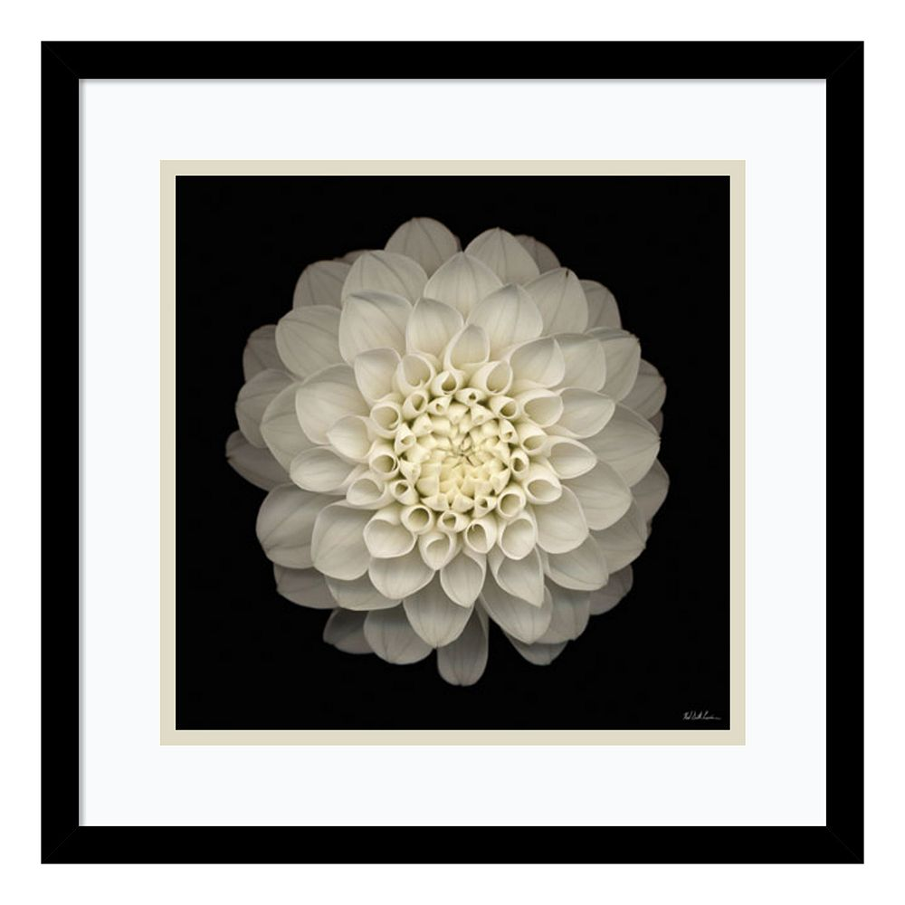 ''Dahlia 22'' Floral Framed Wall Art