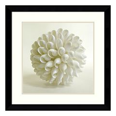''Shell III'' Framed Wall Art