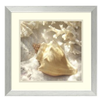 ''Coral Shell IV'' Framed Wall Art