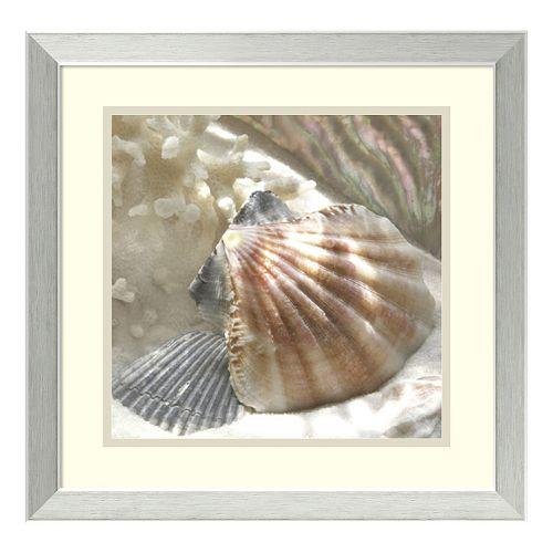 ''Coral Shell III'' Framed Wall Art