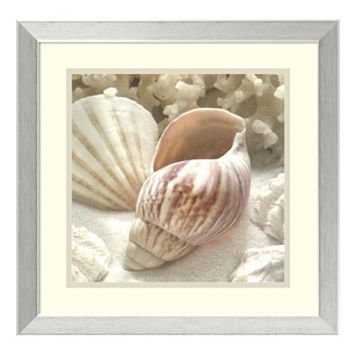 ''Coral Shell II'' Framed Wall Art