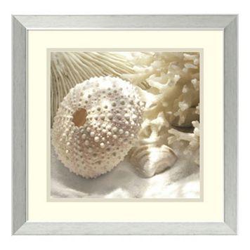 ''Coral Shell I'' Framed Wall Art