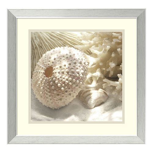 ''Coral Shell I'' Framed Wall Art