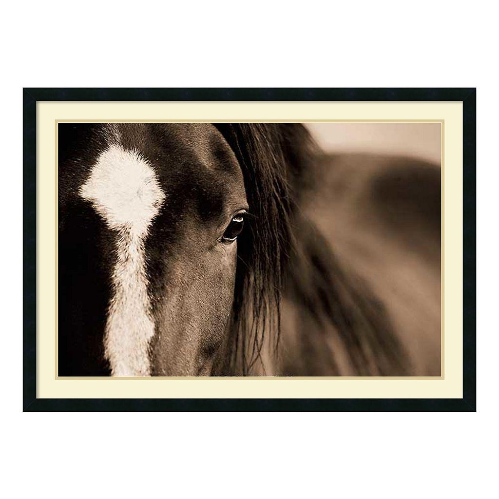 ''Dark Eyes'' Horse Framed Wall Art