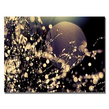 30'' x 47'' ''Moonrise in Fairyland'' Canvas Wall Art
