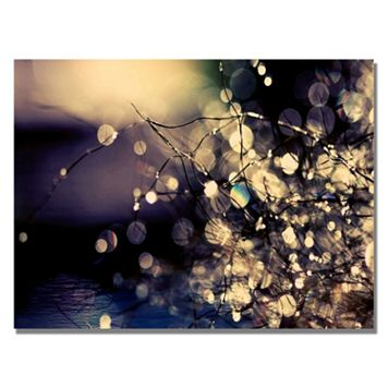 30'' x 47'' ''Fairies In My Garden'' Canvas Wall Art