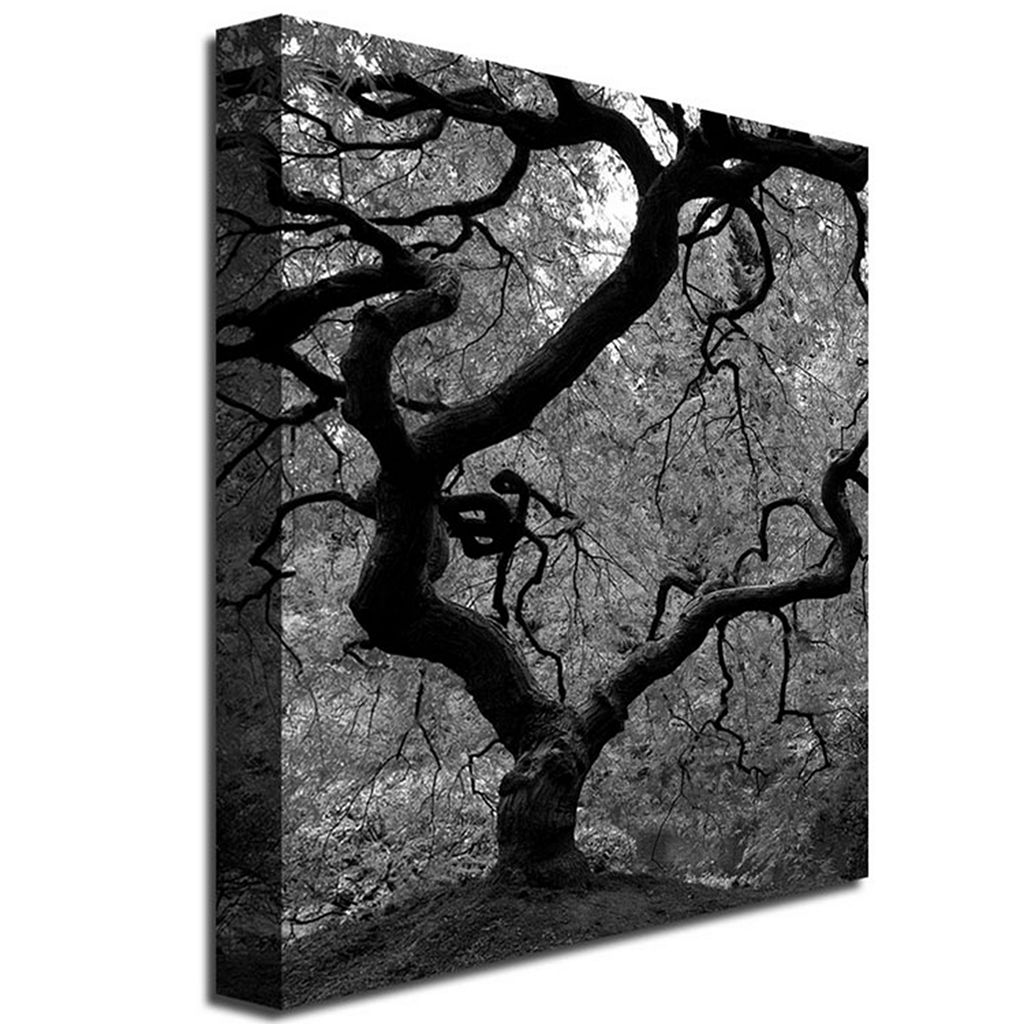 18'' x 24'' ''Japanese Tree II'' Canvas Wall Art
