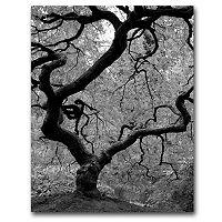 35'' x 47'' ''Japanese Tree II'' Canvas Wall Art