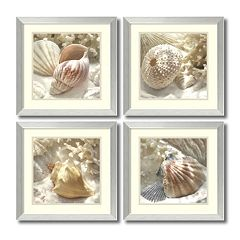 ''Coral Shell'' 4 pc Framed Wall Art Set