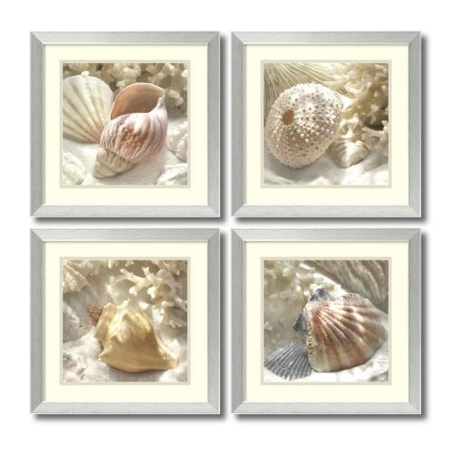 """Coral Shell"" 4-piece Framed Wall Art Set"