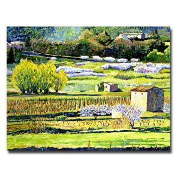 26'' x 32'' ''Bordeaux Vineyards in Spring'' Canvas Wall Art by David Lloyd Glover