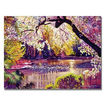 18'' x 24'' ''Central Park Spring Pond'' Canvas Wall Art by David Lloyd Glover
