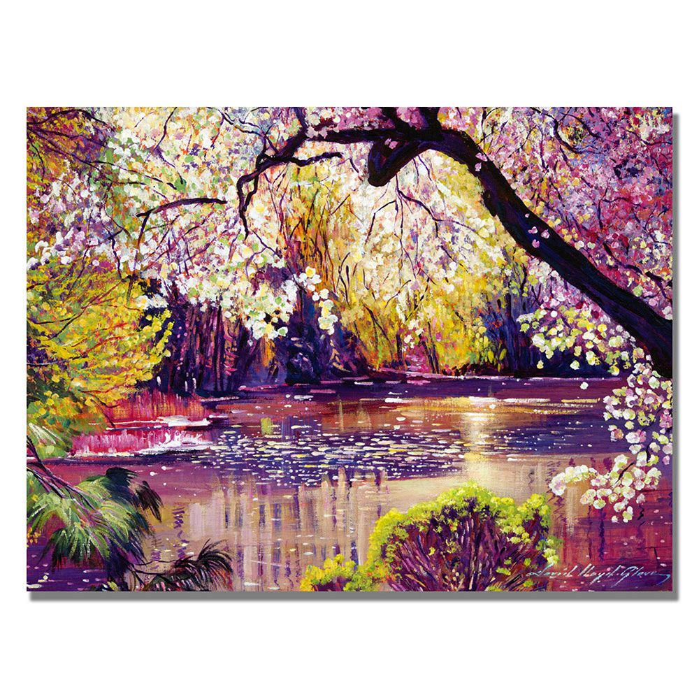 24'' x 32'' ''Central Park Spring Pond'' Canvas Wall Art by David Lloyd Glover
