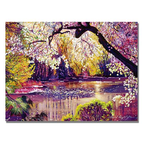 24'' x 32'' ''Central Park Spring Pond'' Canvas Wall Art by David Lloyd Glover