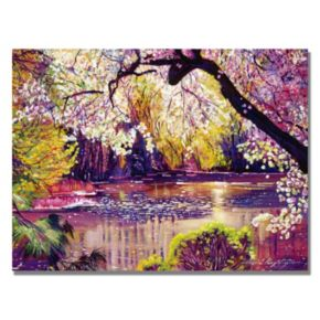 35'' x 47'' ''Central Park Spring Pond'' Canvas Wall Art by David Lloyd Glover