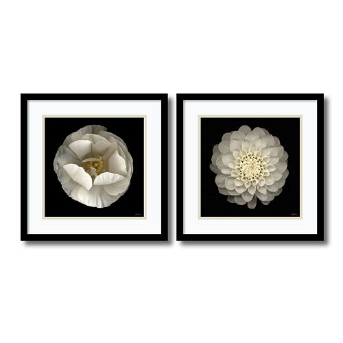 ''Levine Floral'' 2-piece Framed Wall Art Set
