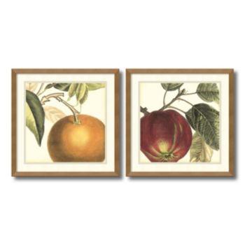 'Orange and Apple'' 2-piece Framed Wall Art Set
