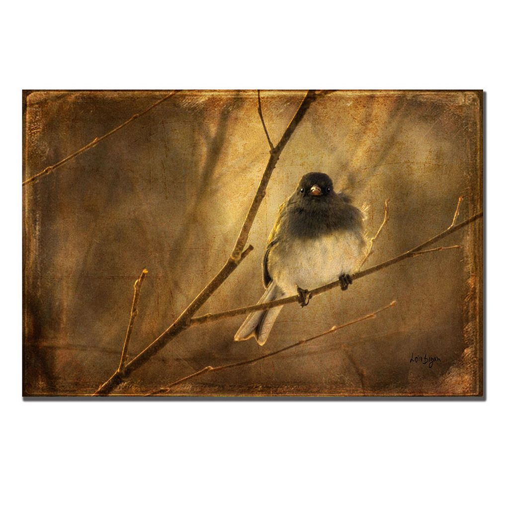 16'' x 24'' ''Backlit Birdie Being Buffeted'' Canvas Wall Art by Lois Bryan