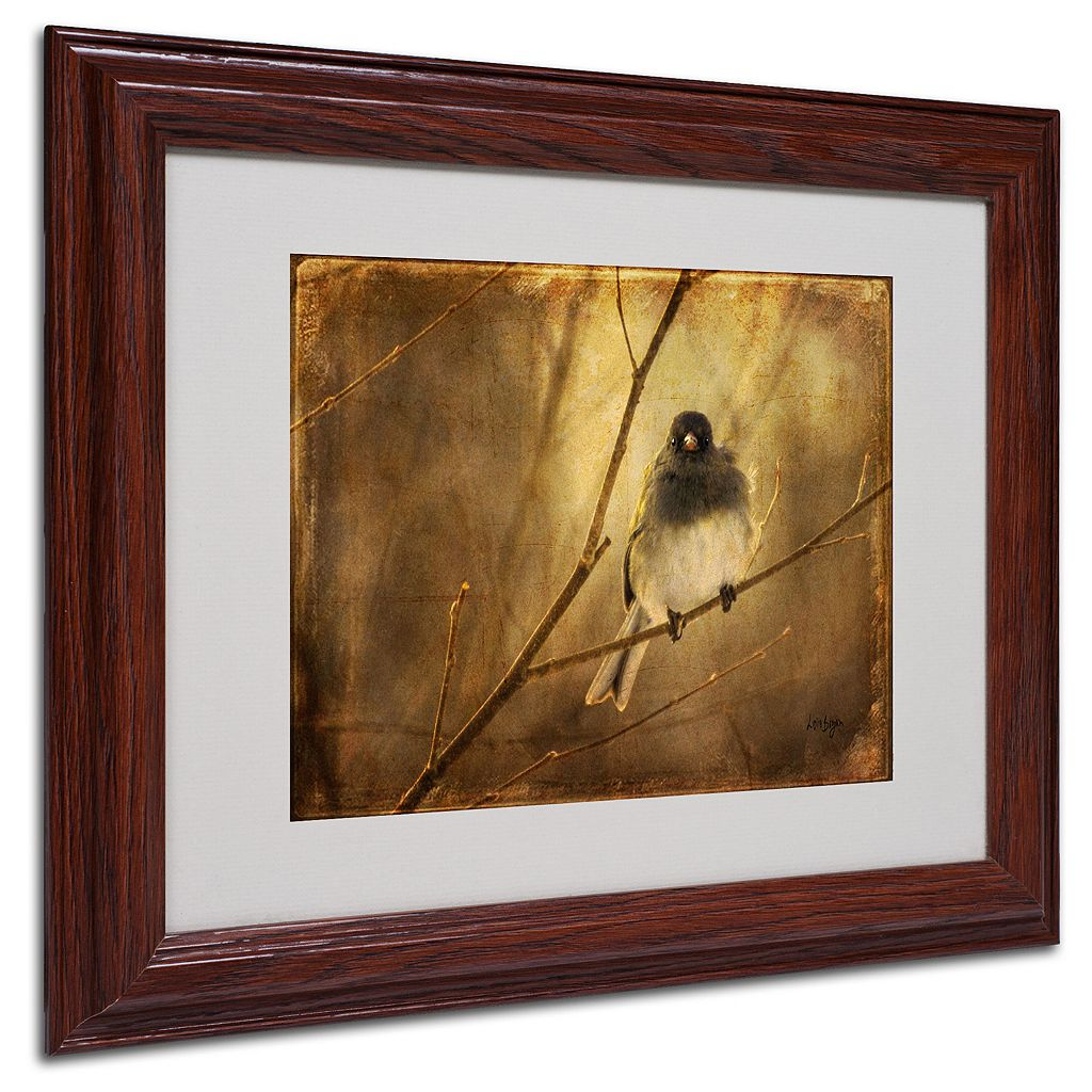 11'' x 14'' ''Backlit Birdie Being Buffeted'' Framed Canvas Wall Art by Lois Bryan