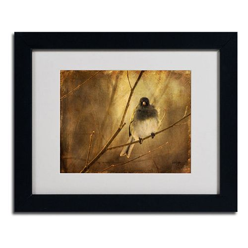 11'' x 14'' ''Backlit Birdie Being Buffeted'' Framed Canvas