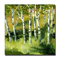 24'' x 24'' ''Birch Trees'' Canvas Wall Art by Michelle Calkins