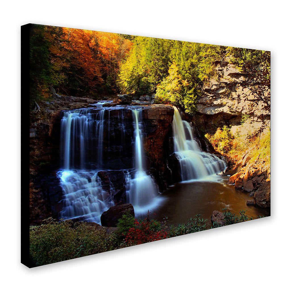 16'' x 24'' ''Motion'' Waterfall Canvas Wall Art