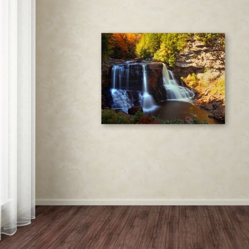 16'' x 24'' ''Motion'' Waterfall Canvas Wall Art