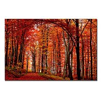 ''The Red Way'' Autumn Canvas Wall Art