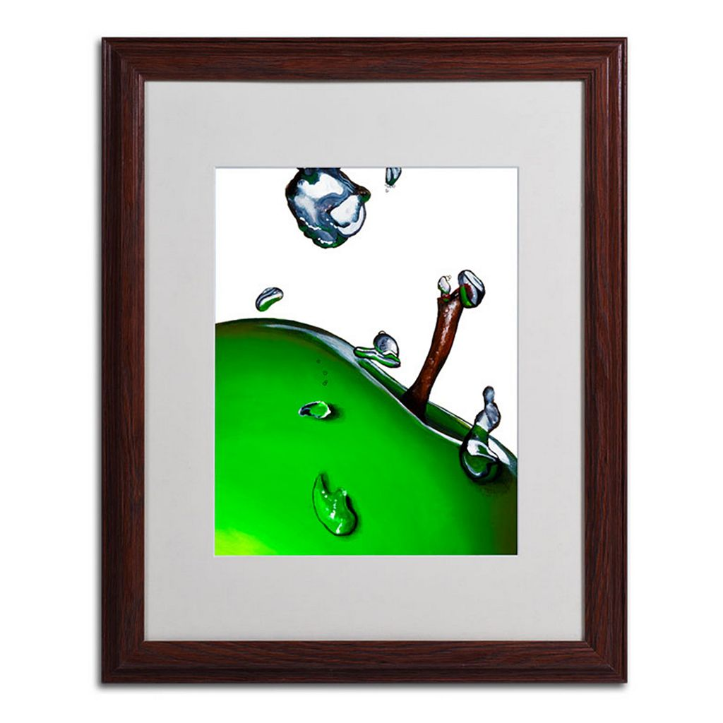 20'' x 16'' ''Granny Splash II'' Apple Framed Canvas Wall Art