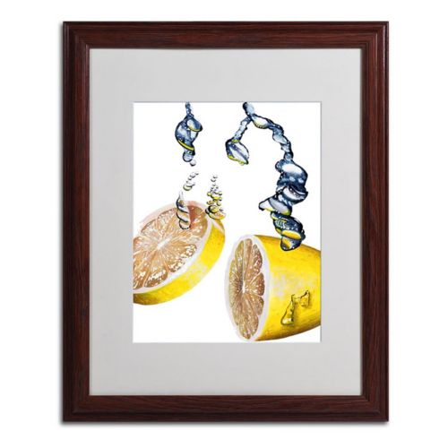 16'' x 20'' ''Lemon Splash II'' Framed Canvas Wall Art