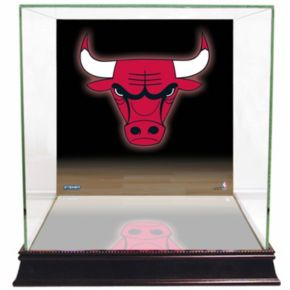Steiner Sports Glass Basketball Display Case with Chicago Bulls Logo Background