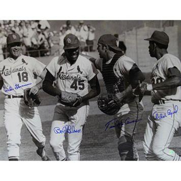 Steiner Sports St. Louis Cardinals 16'' x 20'' Signed Photo