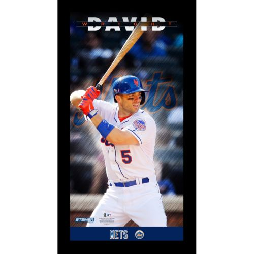 Steiner Sports New York Mets David Wright 10'' x 20'' Profile Wall Art