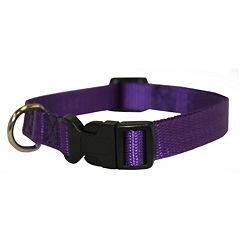 Majestic Pet 26-Inch Collar