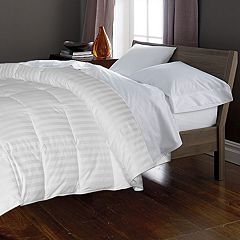Royal Majesty Damask Stripe 350-Thread Count Down & Feather Comforter