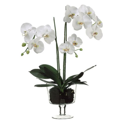 29-in. Artificial Phalaenopsis Plant